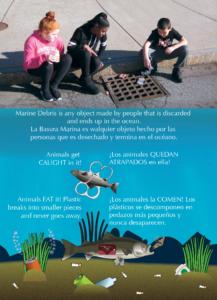 Brochure Illustrators