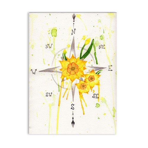 Featured-Daffodil-Compass-Watercolor