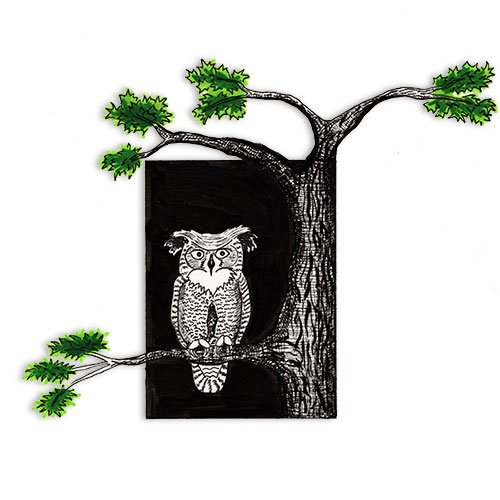 Featured-Owl-in-Tree