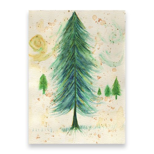 Featured-Pine-Trees-MM